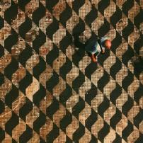 Foto clicada na Praça do Correio por @pqpkau. Via #saopaulowalk