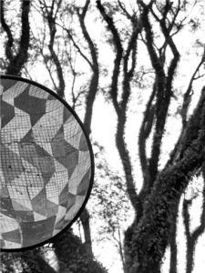 Foto tira partido do reflexo da popular calçada com o diagrama de SP.  Foto: Duda Groisman